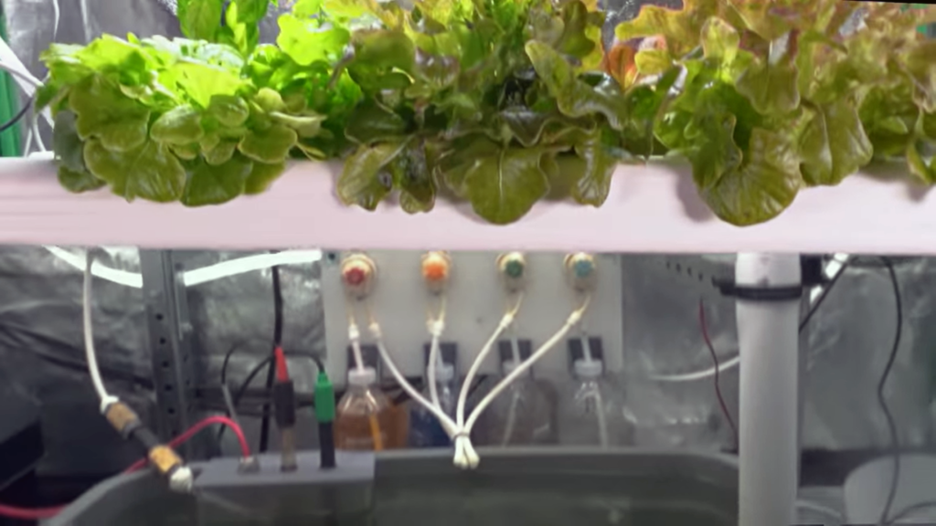 set up Hydroponic Water Pumps