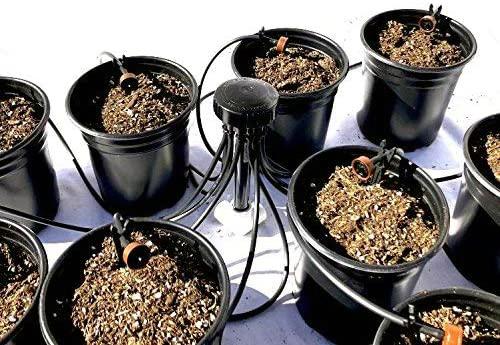 dutch bucket recirculating drip system